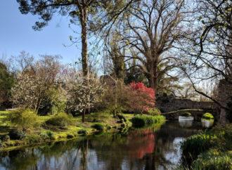 Il giardino di Ninfa, un luogo incantato tra archeologia e natura